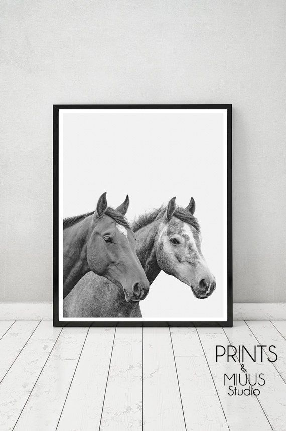 Horse Print Horse Photography Horse Printable by PrintsMiuusStudio
