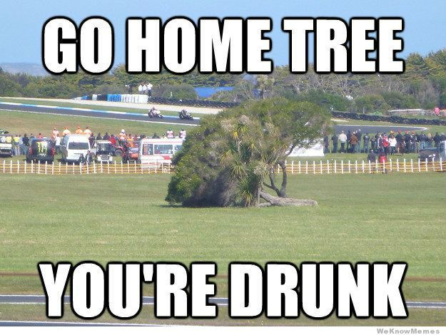 7e1223bc014f845c9f2f4e30a55a2944 drunk memes funny ha ha 215 best go home you're drunk images on pinterest funny shit,Go Home Bessie You Re Drunk Meme