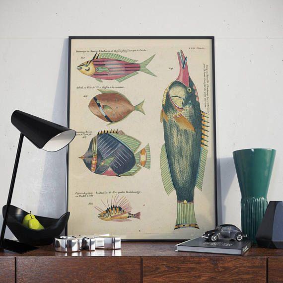 Fish Poster Sea Life Art Taxonomy Wall Art Fishes Wall Art