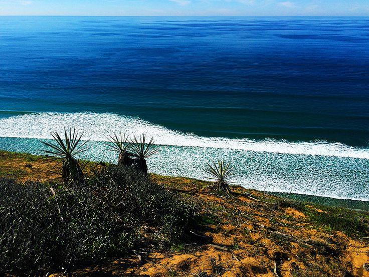 Torrey Pines State Natural Reserve, California, USA