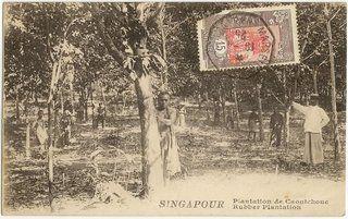 Singapore Rubber Plantation postcard used from French Somalia photo SingaporeRubberPlantationpostcardusedfromFrenchSomalia1.jpg