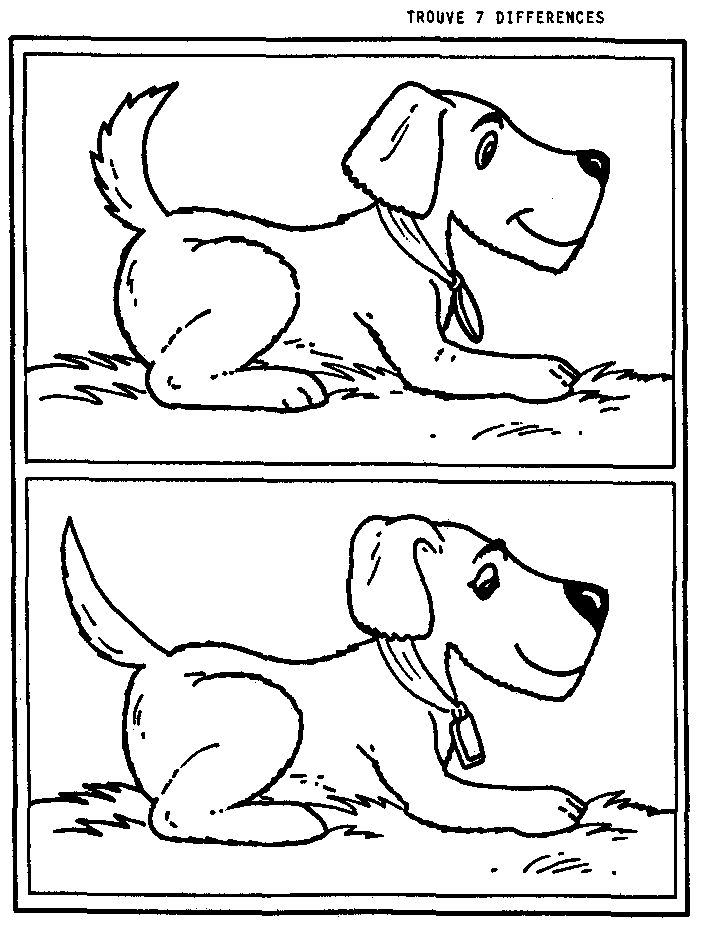KleuterDigitaal - wb verschillen hond 01