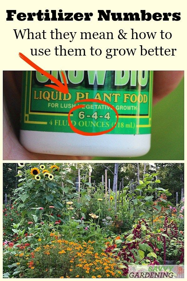 Fertilizer Numbers What They Mean And How To Use Them To Grow Better In 2020 Fertilizer For Plants Fertilizer Organic Gardening