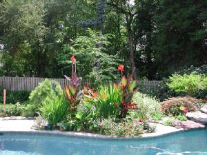 having a garden near or around the pool adds a certain ambiance to your yard