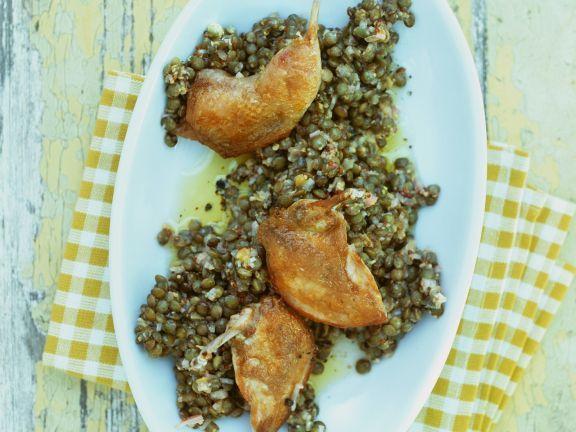 Gebratene Wachtel mit Linsensalat ist ein Rezept mit frischen Zutaten aus der Kategorie Wildgeflügel. Probieren Sie dieses und weitere Rezepte von EAT SMARTER!