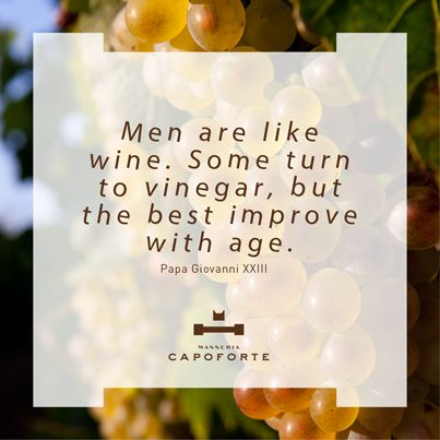 """MASSERIA CAPOFORTE 