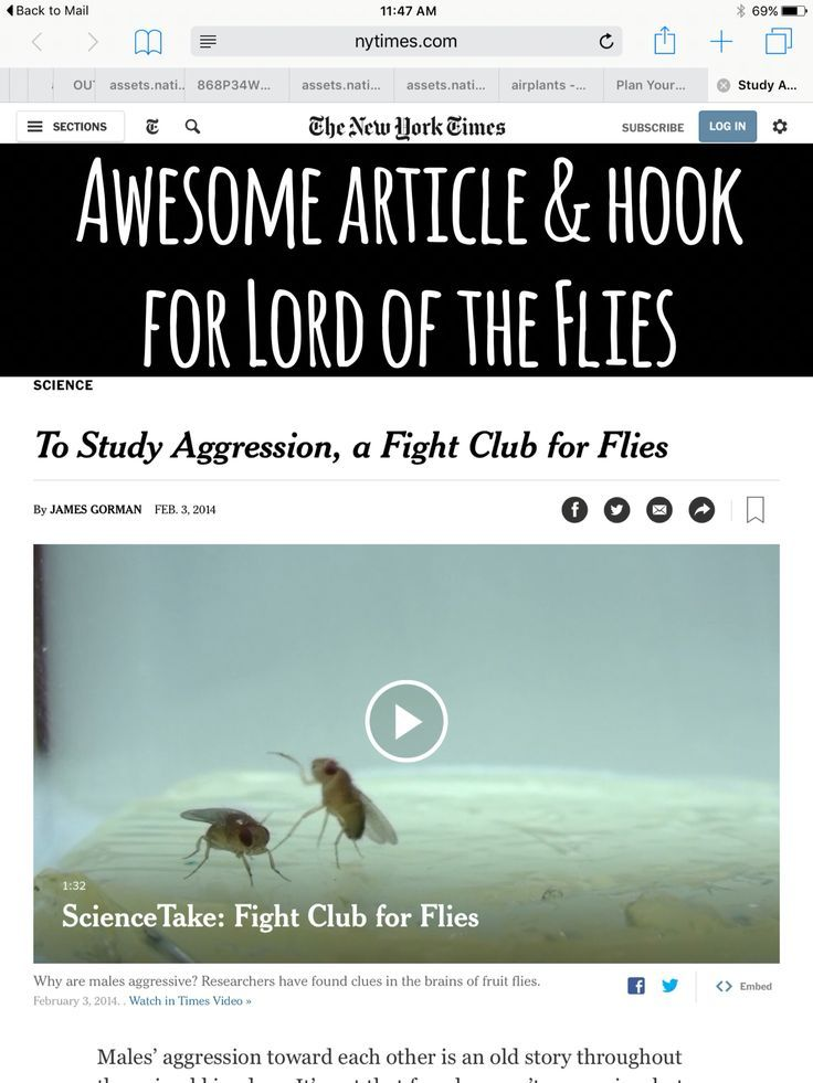 an analysis of the pessimism in lord of the flies a novel by william golding Need help on themes in william golding's lord of the flies check out our thorough thematic analysis from the creators of sparknotes.