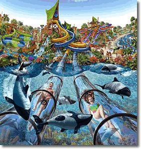 Aquatica - Aquatica (Orlando, Florida)