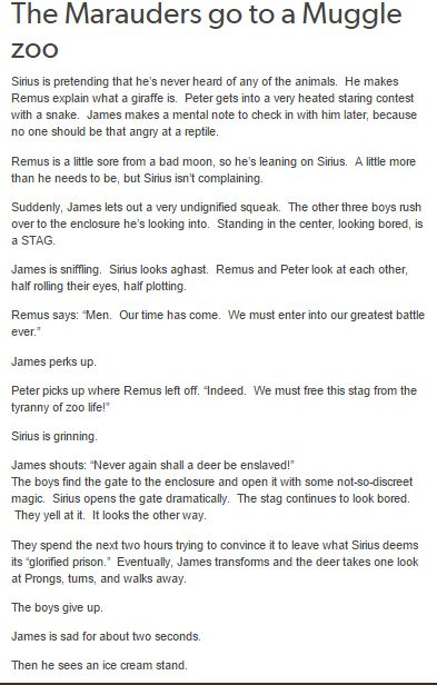 The Marauders - A Muggle Zoo<< How did no one notice this happening though?
