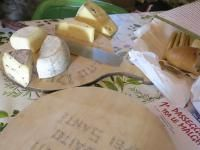 Lake Garda famous for it's wonderful cheeses