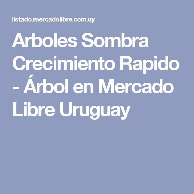 Arboles Sombra Crecimiento Rapido - Árbol en Mercado Libre Uruguay