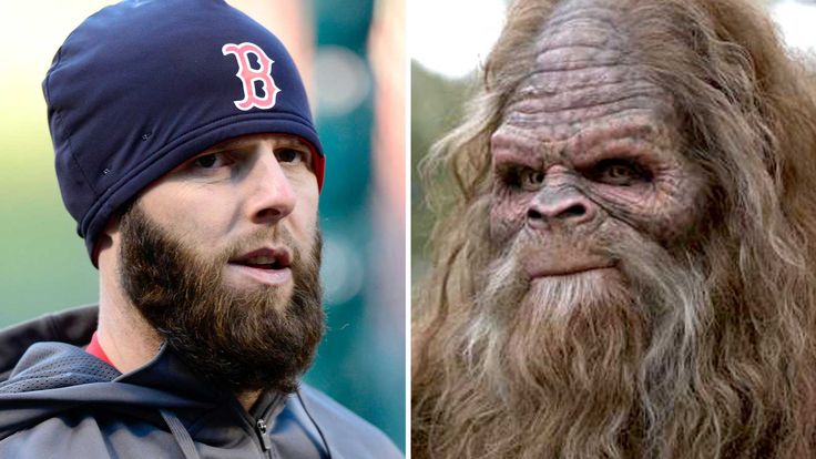 Dustin Pedroia admits he's a Bigfoot believer: 'They're out there'
