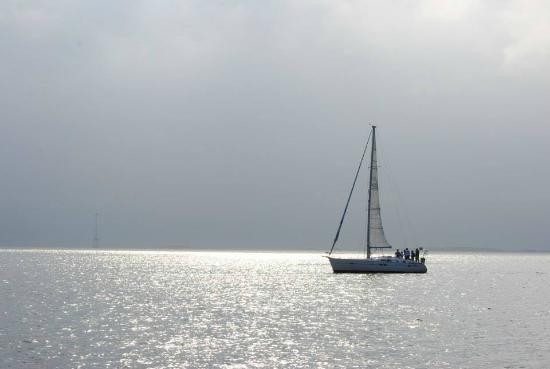 Sailing cruise on Charleston Harbor - Picture of Tohidu Sailing ...