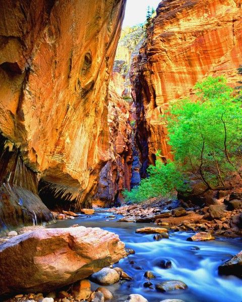 Zion we-should-go-here