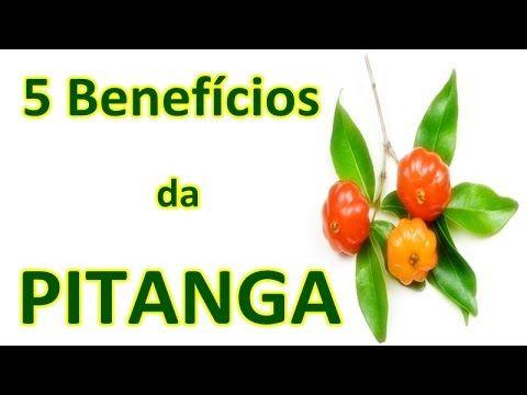 Vida e benefícios funcionais da pitanga - Blog Doando Vida