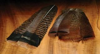 Kalkkunan pyrstösulkapari PITKÄ (cinnamon tip) - Höyhenet ja sulat - Kalastusväline Rialinna