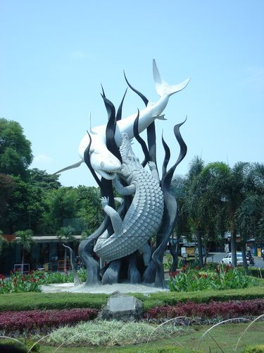 "SURABAYA SYMBOL. East Java  Etymology Surabaya is locally believed to derive its name from the words ""sura"" or ""suro"" (shark) and ""baya"" or ""boyo"" (crocodile), two creatures which, in a local myth, fought each other in order to gain the title of ""the strongest and most powerful animal"" in the area according to a Jayabaya prophecy."