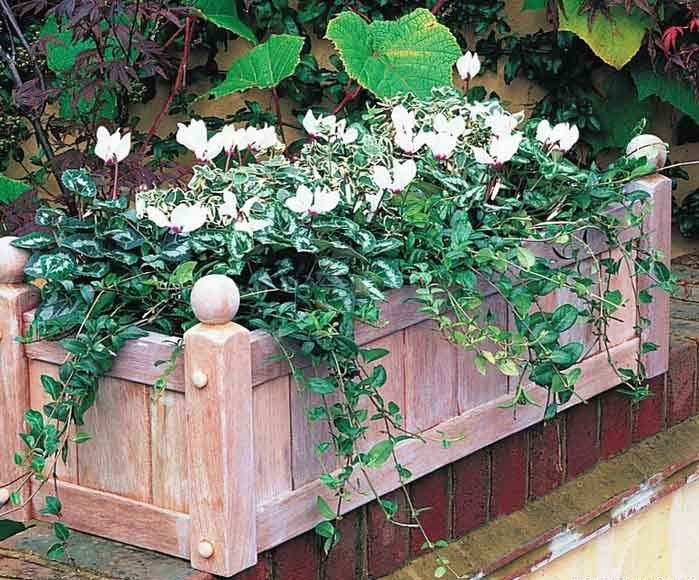 Как сделать деревянный ящик для цветов и растений своими руками