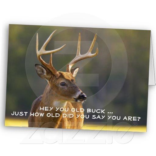 Hunting Funny Buck Animal Camo Happy Birthday 2 Card