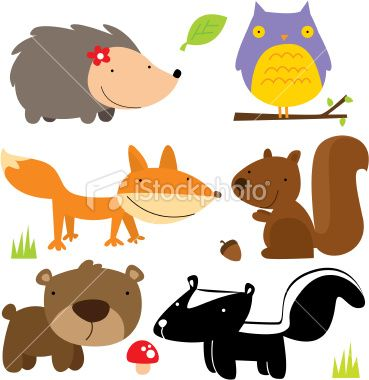 cute forest animals Royalty Free Stock Vector Art Illustration
