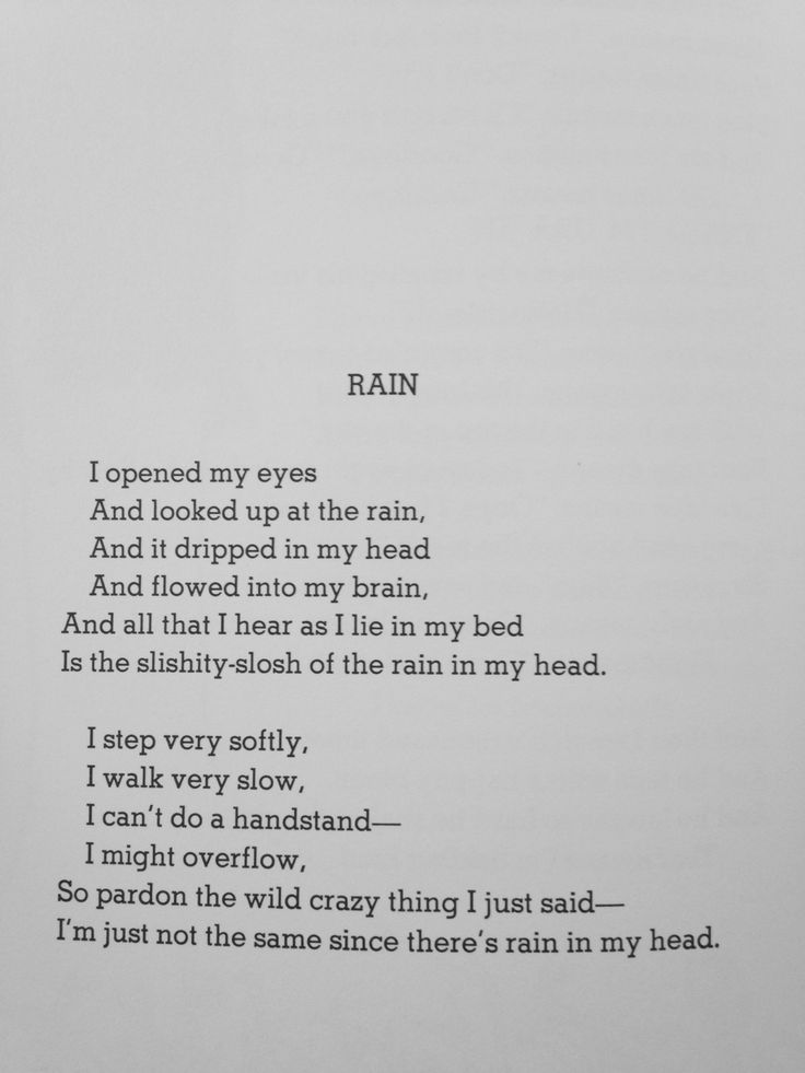 All Things Shel Silverstein : Photo