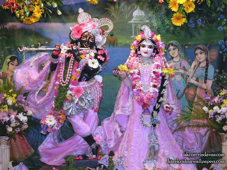 http://harekrishnawallpapers.com/sri-sri-radha-shyamsundar-iskcon-vrindavan-wallpaper-012/