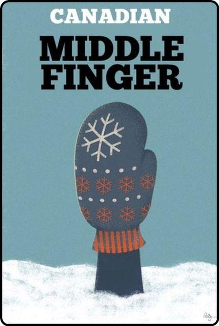 (12848) Fancy - Canadian Middle Finger. So love it.