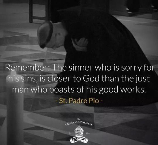 Remember: The sinner who is sorry for his sins, is closer to God than the just man who boasts of his good works. ~ St. Padre Pio A Catholic Rose