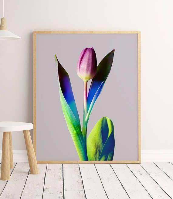 Flower Art Print Flower Artwork Plant Photography Flower
