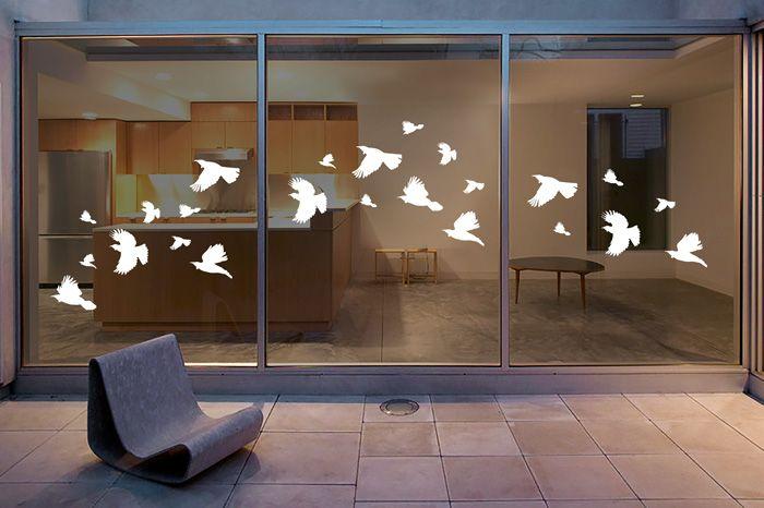 Window Strike Flying Tui Decals Decal Wall Art Wall Art Designs