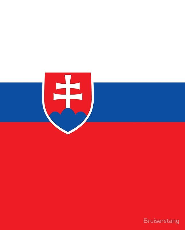 Flag of Slovakia - Authentic high quality version