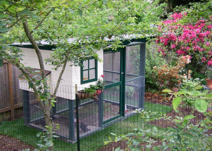 Backyard Chicken Coop Built From Garden Coop Plans.