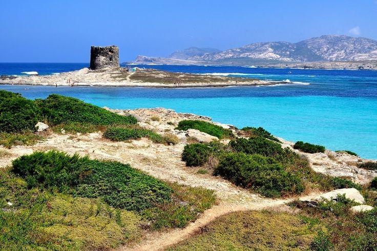 Sardaigne, une beauté sauvage