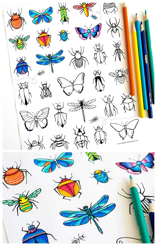 Free printable bugs & butterflies coloring page