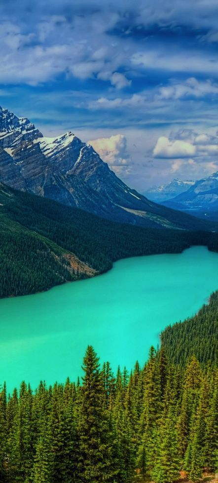 Peyto Lake, Banff National Park, Canada   Yes it is really that blue!   Directions & Travel Tips