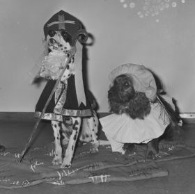 1965 - Honden verkleed als Sint en Zwarte Piet op een kleuterschool