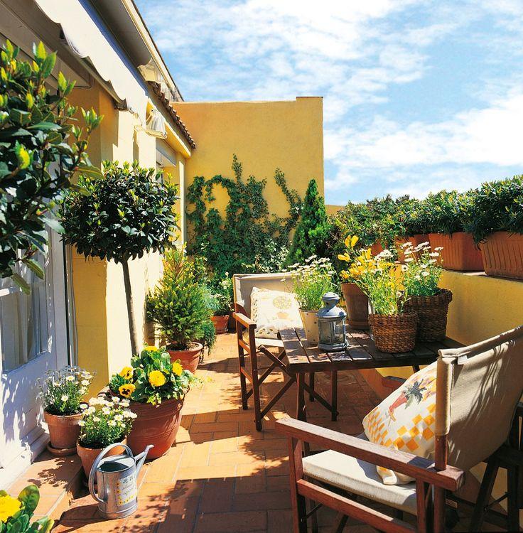 M s de 1000 ideas sobre plantas de jard n de sombra en - Jardines en la terraza ...