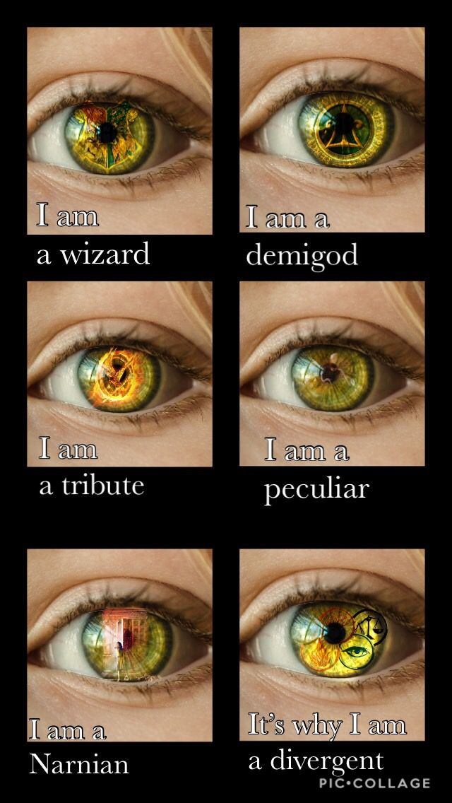 Todos mis libros favoritos Falta sólo el señor de los anillos