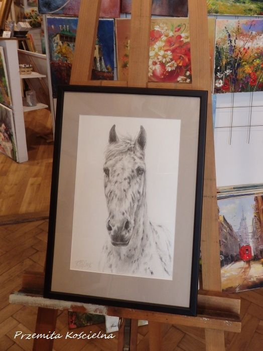 Graphite pencil drawing on request. Framed. #horse #art #drawing #graphite #framed