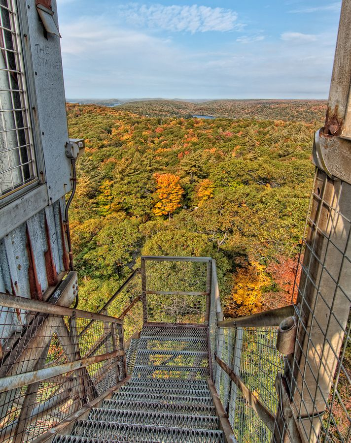 View from the top of the stairs at the Dorset Scenic Lookout Tower, photo by James Wheeler