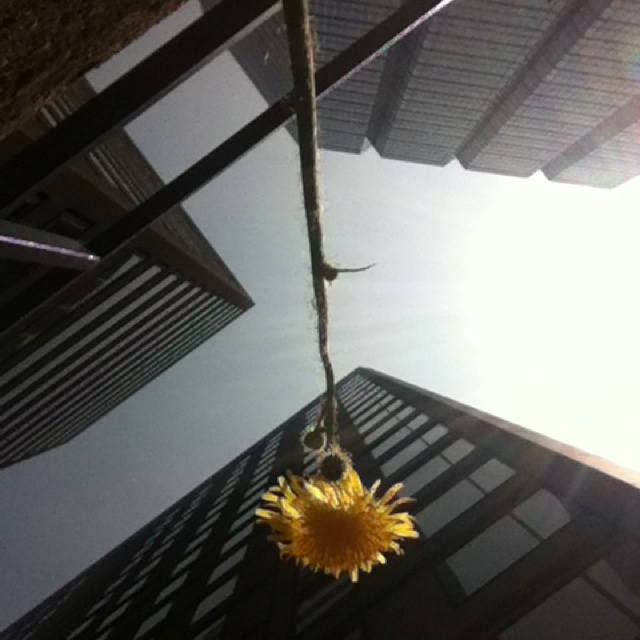 Sunshine in the core