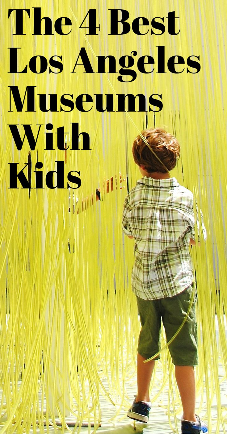 Best  Art Museum Ideas On Pinterest - How many museums in usa