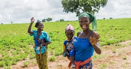 The International Fund for Agricultural Development (IFAD) has set aside $93.5 million to support 727000 farmers in seven states in Nigeria.  The assistance is on the platform of IFADs Climate Change Adaptation and Agribusiness Support Programme (CASP).  Alhaji Lawal Idah the National Programme Coordinator of CASP said in Katsina on Thursday the states are Sokoto Kebbi Katsina Jigawa Yobe Borno and Zamfara.  Idah said that the project would be implemented in 727 villages across 104 local…