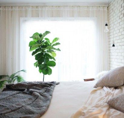 Viac ako 25 najlepších nápadov na Pintereste na tému Transparente - gardinen für schlafzimmer