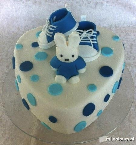 Nijntje Boys Cake