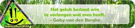 Het geluk bestaat erin te verlangen wat men heeft. - Gaby van den Berghe http://naturerunswild.com/spreuken-geluk.php #citaat