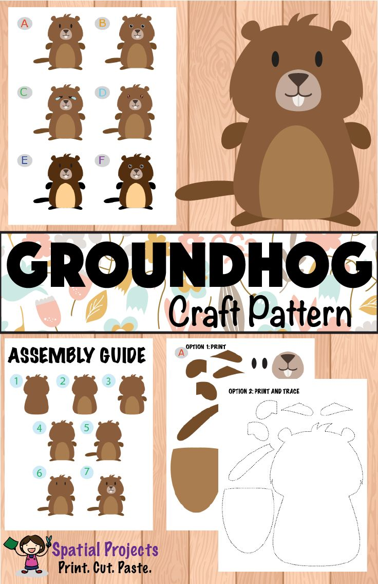 Groundhog day - Inquiry-based learning *Includes groundhog lapbook making guide, groundhog craft pattern, worksheets, reading passages, fun facts