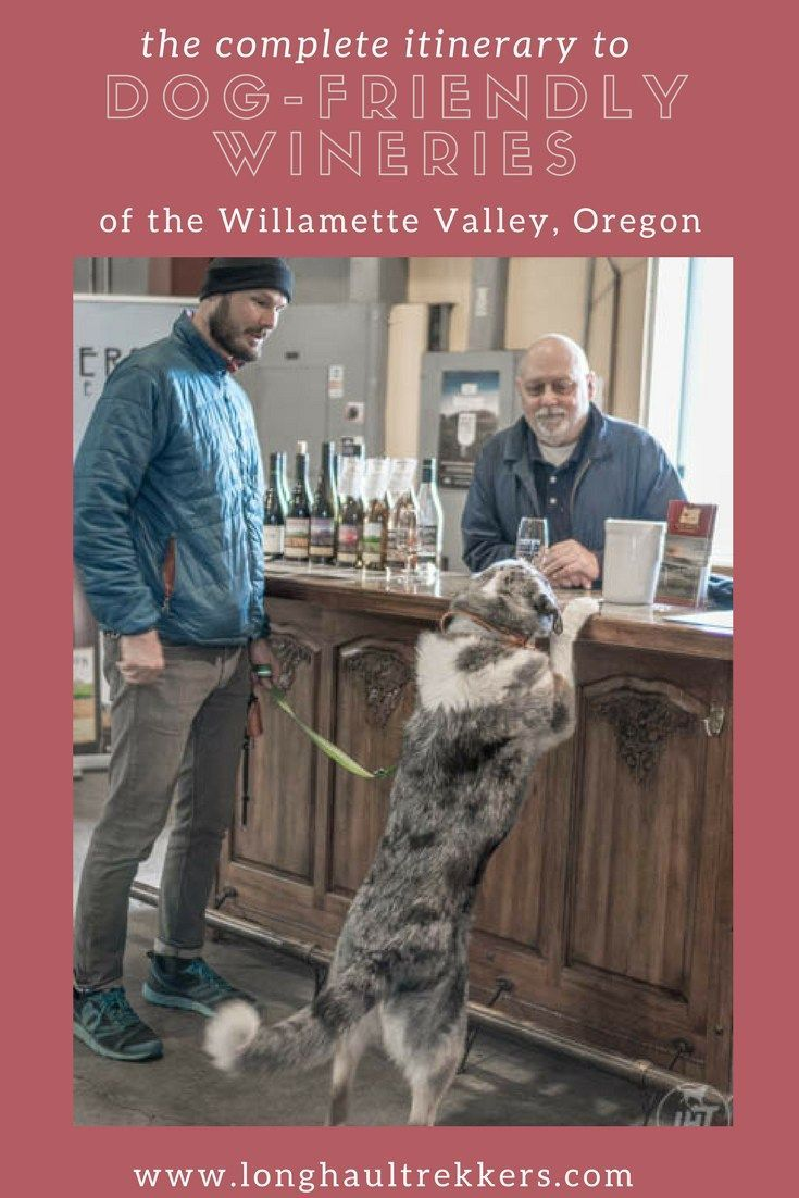Wine Tasting Is One Of The Most Dog Friendly Activities Around This Itinerary Showcases Some Of The Willamette Valley Dog Friends Willamette Valley Willamette