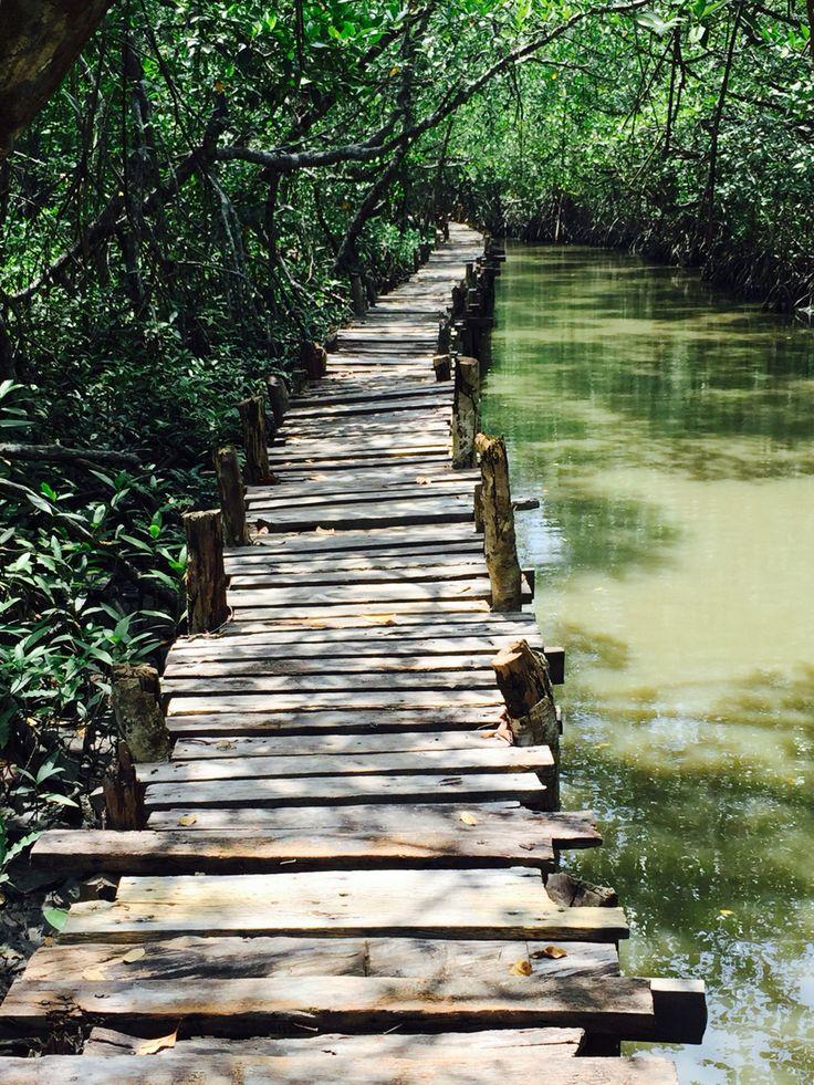Cambodia - Ream National Park, Sihanoukville