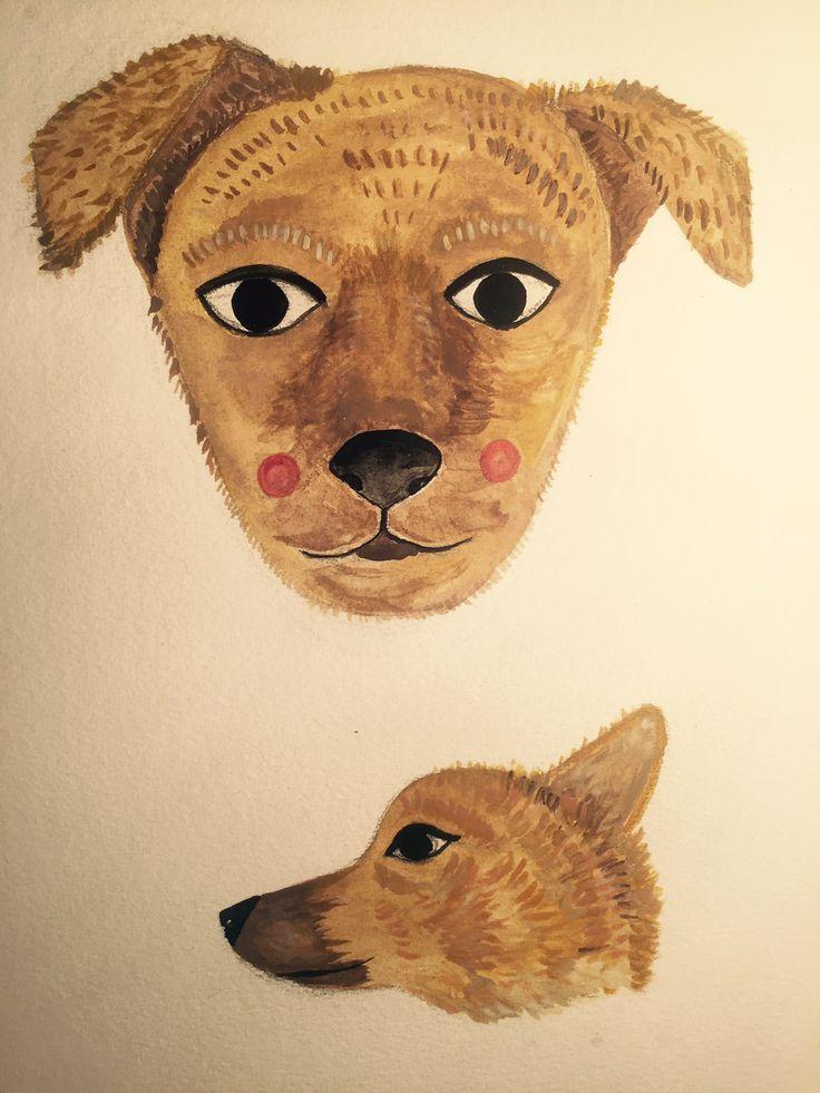 Foxy, stray dog promotion